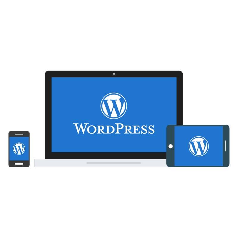 Best Practices for Managing your WordPress website